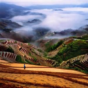 longsheng-riziere-terrasse-1[1]